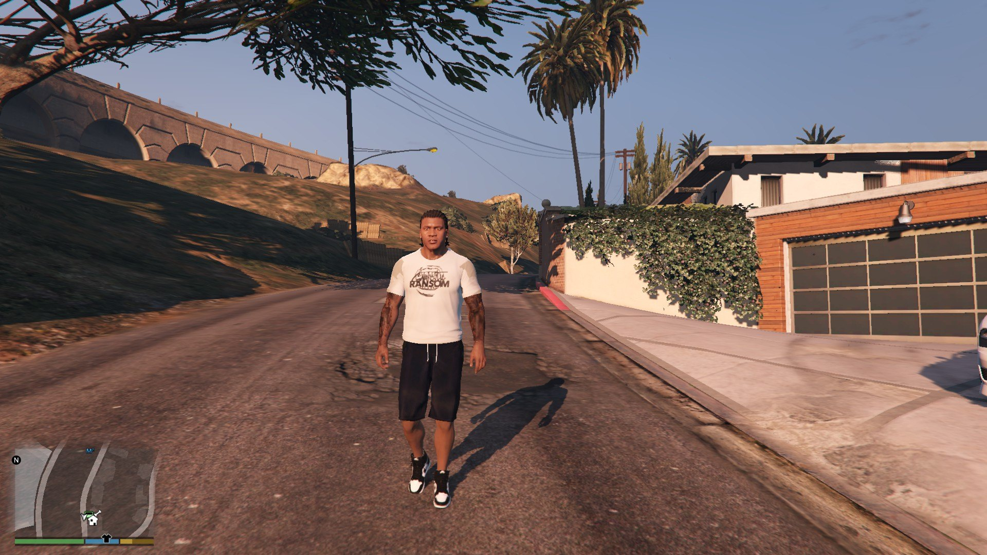 T-Shirt Collection Gnarcotic For Franklin GTA5 Mods (8)